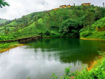 vagamon-hill-valley-0